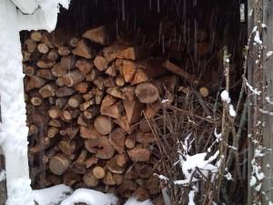woodshed 120909 010