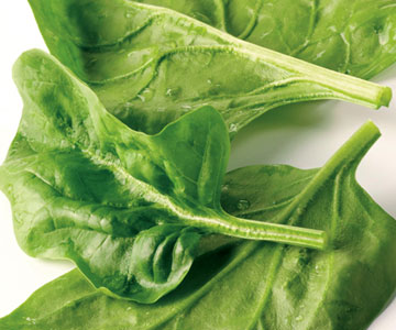 Spinach Better Than Soy Milk