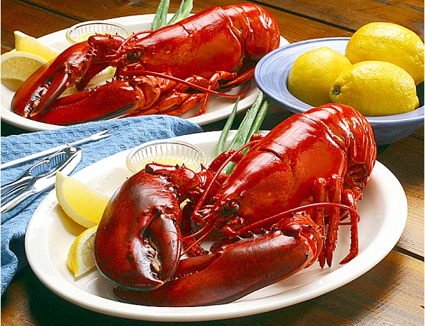 Lobster: the Nutritional Powerhouse