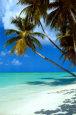 Tropical Island Stress Release Audio
