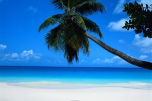 tropical island photo for stress relief audio guided meditation visualization