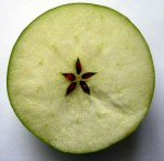 apple, fruit of the goddess