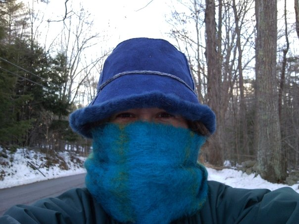 Heather in Winter