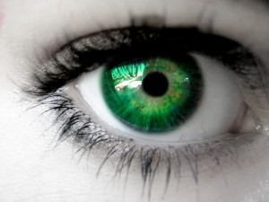 think with your own eyes -- spiritual surivival tactics