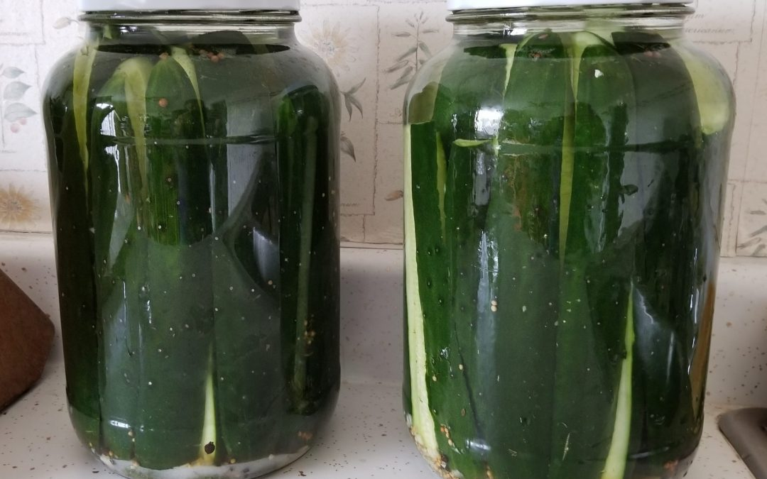 Counter-Top Pickles Recipe