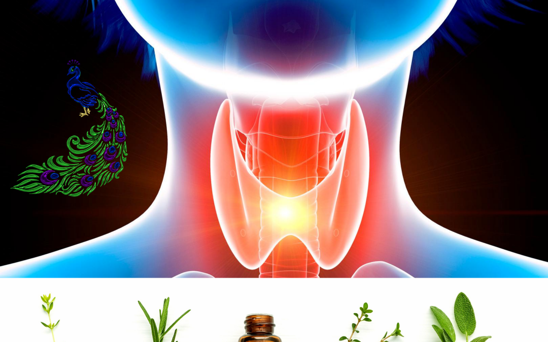 Essential Oils for Thyroid